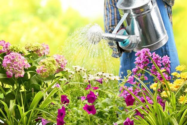 Vous chercher un jardinier ? Maison et Jardin 82 fait le jardinage pour vous à Montauban et Tarn-et-Garonne